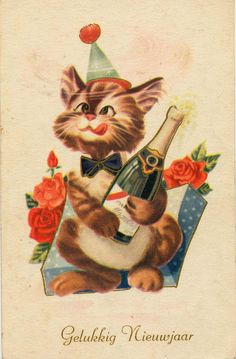 Dutch Happy New Year Year cat postcard