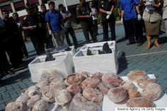 This Is How A Species Goes Extinct: More Than A Ton Of Frozen Pangolin Meat Seized In Indonesia