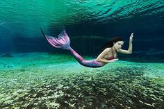 Mertailor's Silicone Mermaid Tail by mertailor on Etsy, $2250.00