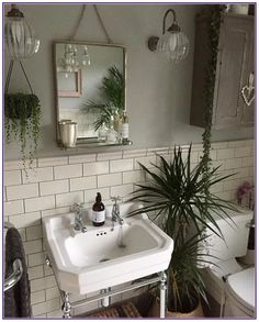 Bathroom Decor plants Have you used our tiles in your home Share your creation with us today to get featured with hundreds of stunning customer photos. Diy Bathroom, House Bathroom, Bathroom Inspiration, Bathrooms Remodel, Bathroom Decor, Interior, Bathroom Design, Minimalist Bathroom, Home Decor