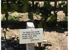 sign in the vineyard