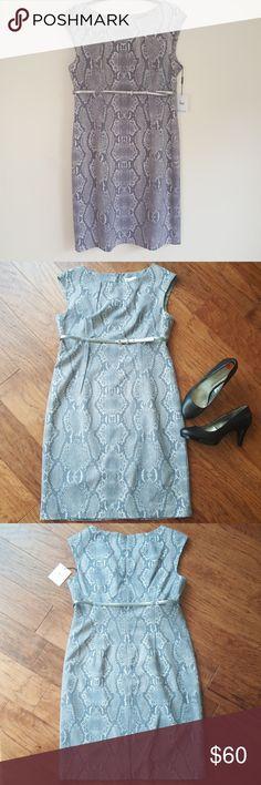 Calvin Klein Shift Dress NWT, Grey snakeskin pattern, has lining, walking split in back of dress, silver belt to cinch the waist and hidden zipper in back of dress. Knee length  Measurement  Shoulder to hem - 38' Across bust area - 20' Calvin Klein Dresses Midi