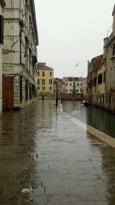 Vita Quotidiana Pioggia
