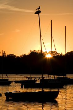 Lake Harriet, a perfect spot to take in summer under sail without leaving the city, Minneapolis.