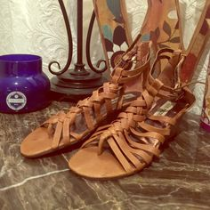Steve Madden Sandals NEVER WORN! These are super cute Steve Madden tan/brown leather sandals with a 2 inch heel! They have a zipper in the back and also have two buckles on the sides! No trades please. Steve Madden Shoes Sandals