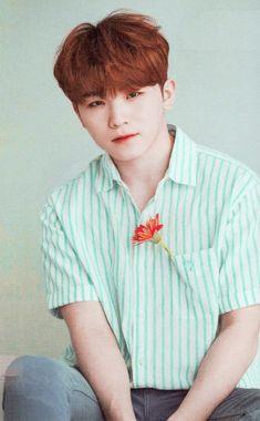 Listen to every Seventeen track @ Iomoio Seungkwan, Wonwoo, Jeonghan, Seventeen Memes, Seventeen Woozi, Vernon, Yolo, Love Of My Live, Hip Hop