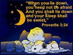 Proverbs 2: 24 When you lie down, you need not be afraid And you shall lie down and your sleep shall be sweet