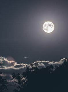 Full moon by north sky photography night skies moon, sky и m Night Sky Moon, Night Skies, Moon Photography, Landscape Photography, Ciel Nocturne, Shoot The Moon, Moon Pictures, Beautiful Moon, Sky Aesthetic