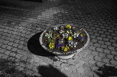 ci vediamo questa primavera by Clay Bass on 500px