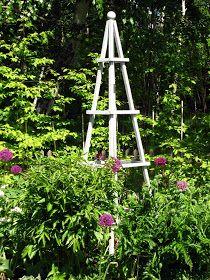 Gardening – Gardening Ideas, Tips & Techniques Plants For Raised Beds, Plant Supports, Display Boxes, Flower Beds, Garden Inspiration, Garden Ideas, Trellis, Bunt, Outdoor Gardens