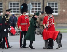 Prince William, who is Colonel of the Irish Guards, (left in black uniform) and heavily pregnant Kate are seen visiting the 1st Battalion at their base in Hounslow, west London