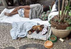 Revista Meu Pet - A revista que todo mês traz matérias incríveis para deixar seu bichinho saudável e feliz.<!--Foto de cão dormindo ao lado de morador de rua faz sucesso na web Home PET FAMOSO -->