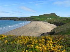 Glorious Whitesands beach, west Wales. #visitwales #wales #visitpembroke #beaches #stdavids