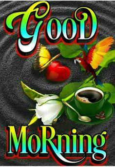 Good Morning Friends Images, Good Morning Beautiful Images, Beautiful Birds, Good Morning Roses, Good Morning Gif, Happy Birthday Grandson, Good Night Messages, Morning Quotes, Pictures