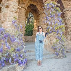 Found my favorite plant (wisteria) growing like crazy in Barcelona…