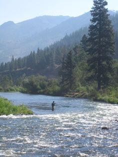 truckee river -fly fishing is great.