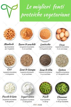 """Vegetarian protein: the 12 best vegetarian protein sources – Fit In Hub """"I am so bored!"""