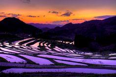 千葉県・大山千枚田のおすすめの楽しみ方 おすすめ撮影スポット