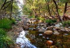 MT Barney Lower Portals walk, Mt Barney National Park, #Queensland