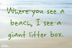 Where you see a beach, I see a giant litter box. | A rant by RufustheRantCat on Rant.in