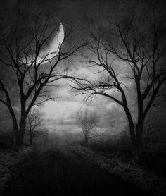 Black & white eerie moon.