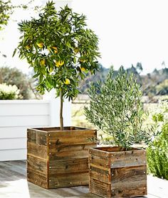 reclaimed wood planters?