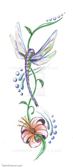 Dragonfly Tattoo By Cheshirebebop On Deviantart Free Download picture 8704