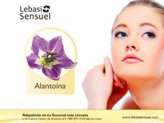 Alantoína, ingrediente natural que hará lucir bella tu piel