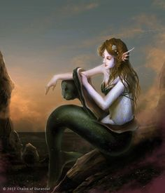 Selkies are known in Scottish, Icelandic, and Faroese folklore, and are creatures who can take either a human or a seal form. Tales of selkies are often tragic love stories where the selkie is kept in captivity in human form, or where they cannot return to land back to their lover.