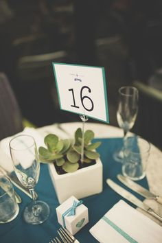 maybe succulents because it's more rustic? // teal + succulents // Photography By / weddingsbyangi.tumblr.com
