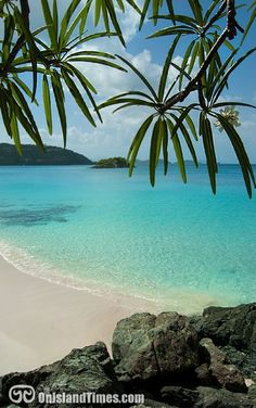 Saint John's longest beach, Cinnamon Bay Beach. Great snorkeling, swimming and water sports ...and if you like, camping!