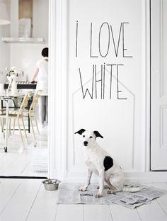 i love white