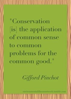 """""""Conservation [is] the application of common sense to common problems for the common good."""" - Gifford Pinchot (Source: 1909 speech at the Conservation Congress in Seattle) The above image has a. Uplifting Quotes, Inspirational Quotes, Conservative Quotes, Gifford Pinchot, Powerful Words, Common Sense, Climate Change, Conservation, Feel Good"""