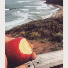 Spring is in the air with amazing weather on the forecast this weekend  #bellajames #apple #organic #janjuc #bells #beach #spring #sunny #freshair #healthy #instagood #weekend #surf #waves #nomnom by bellajamesorganics http://ift.tt/1X8VXis