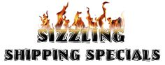 Sizzling Shipping Specials. Guilty As Charged. We're celebrating Summer with fantastic specials on shipping. Right now, all powersports batteries have free shipping, no promo code required. Click on the Pin to read more. #Deal #Special