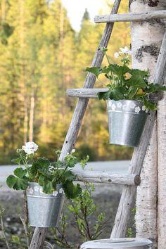 Lehtorinteen elämää Ladder Decor, Cottage, Outdoors, Plants, Home Decor, Decoration Home, Room Decor, Cottages, Plant