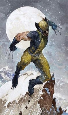 Wolverine by Simone Bianche