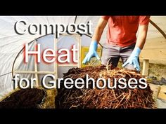 Greenhouse heating using compost and thermal mass - Chauffage de serre avec compost - YouTube