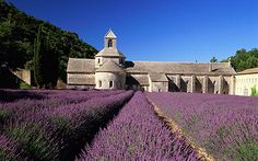 Abbaye De Sénanque, France: One minute wonder - Telegraph