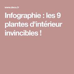 Infographie : les 9 plantes d'intérieur invincibles ! Lawn And Garden, Infographic, Plants, Home, Botany