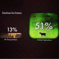 All transportation Vs. Animal Agriculture. So are CO2 emissions really the problem?