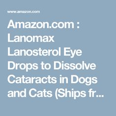 Amazon.com : Lanomax Lanosterol Eye Drops to Dissolve Cataracts in Dogs and Cats (Ships from Amazon Fulfillment Center) : Pet Supplies