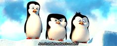 Discover & share this Penguins Of Madagascar GIF with everyone you know. GIPHY is how you search, share, discover, and create GIFs. John Malkovich, Benedict Cumberbatch, Penguins Of Madagascar, Dreamworks Animation, Moving Pictures, Disney Characters, Fictional Characters, Cute Animals, The Originals