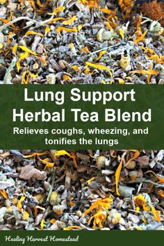 Here is an herbal tea blend recipe that will support your lungs and respiratory system naturally. Youll find relief in your breathing strengthen and tone your lungs with this herbal tea and soothe cough. Its an easy blend to make and it works! Natural Health Remedies, Herbal Remedies, Cold Remedies, Natural Cures, Holistic Remedies, Natural Medicine, Herbal Medicine, Cold Medicine, Medicine Doctor