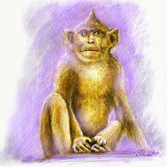 🐒#обезьяна #Monkey #monkeyart #набросок #рисунок #sketchbook #Сушельницкая #Sushelnitskaya #художник #SILa #sketch #кот #животные #художникиодессы #художникиукраины #иллюстрация #иллюстратор #графика #drawing