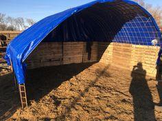 DIY shelter for horses!