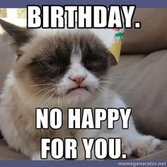 Grumpy Cat Birthday Meme Generator | birthday. no happy for you. - Birthday Grumpy Cat | Meme Generator