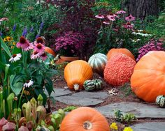 Pumpkins and gourds make great outdoor decor in the autumn! www.fiskars.com