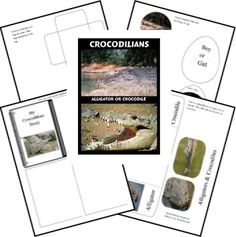 Free Crocodilians Lapbook
