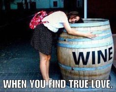 If vino is a way of life thereafter these witty quotes undoubtedly are a window inside of soul. Wine Jokes, Wine Meme, Wine Funnies, Funny Wine, Sarcastic Quotes, Funny Quotes, Funny Memes, Hilarious, Beer Quotes